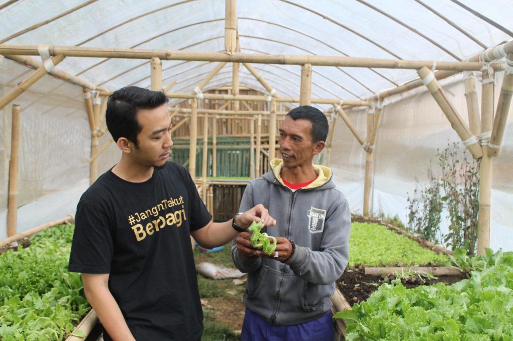 Amid sedang memperlihatkan tanaman sayur kepada Yogi, Amil Dompet Dhuafa Jabar