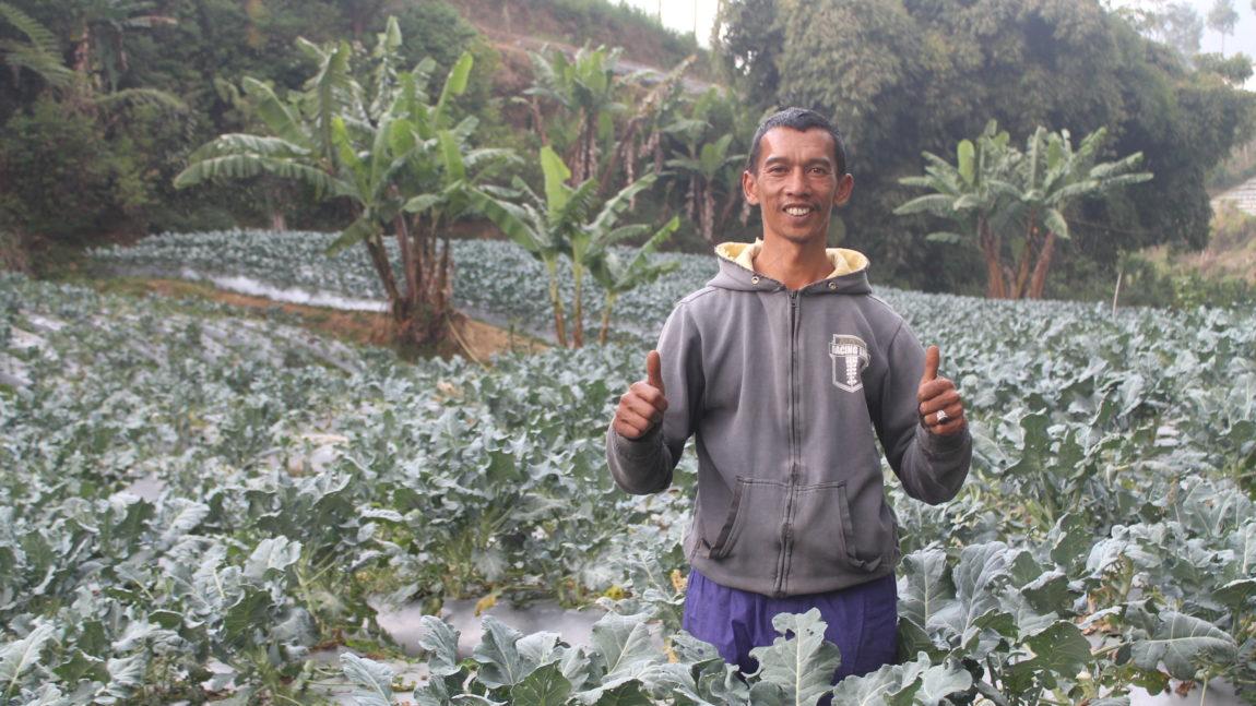 Berbincang dengan Amid: Dulu Pemakai Narkoba, Kini Petani Berdaya